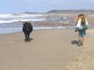 Get off my beach!_1
