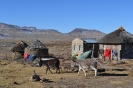 Club Photo Competition 2011 :: Donkey and local dwellings on Sani Top_1