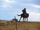 Basotho Horseman